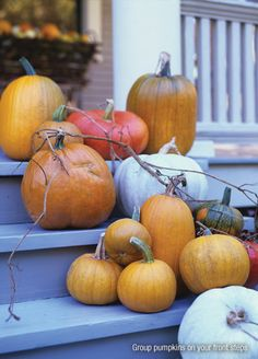 @P. Allen Smith Waiting For The Great Pumpkin ... And For The Gourds, Too! aymag.com