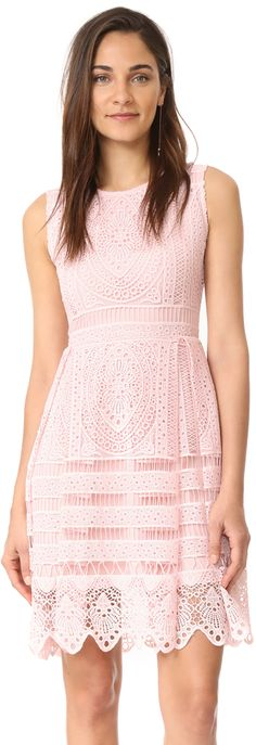 cupcakes and cashmere Summers Lace Fit And Flare Dress   http://shopstyle.it/l/b6tx