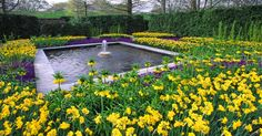 Spring Blooms at Longwood Gardens — Visit Philadelphia — visitphilly.com