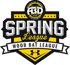 spring league wood bat league - Google Search