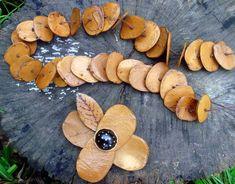 Colar em fava de fruto moeda e fio de algodão.  Atenção: A flor que aparece na foto é um broche e não vem com o colar. Tamanhos e cores personalizadas.
