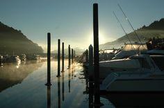 sunrise over the marina Marlborough Sounds, South Island, Small Towns, Cn Tower, New Zealand, Sunrise, Travel, Viajes, Destinations