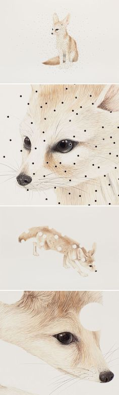 marcela cardenas - gouache on board (with perforated holes) art Art Carte, Art Et Illustration, Fox Art, Painting & Drawing, Fox Painting, Amazing Art, Art Drawings, Contemporary Art, Art Photography