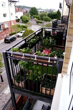 Planting On Small Balcony