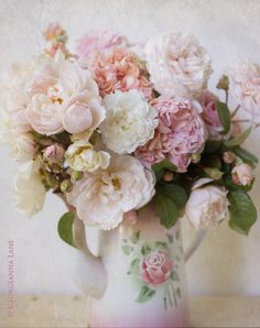 Romancing the Rose @ Georgianna Lane
