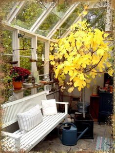 It's Fall In The Greenhouse, Lugn & Ro