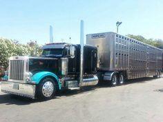 Midwest livestock haulers