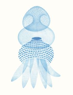 jellyfishes 3 / ameliefontaine