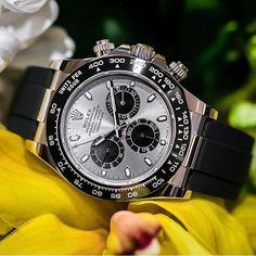 REPOST!!! Novo Rolex Daytona Lançamento #baselworld2017 Crédito @pbandwatches _____________________________________ #rolex #rolexero #yachtmaster #mondani#wristporn #watchfam #watchmania #wristporn#watches #watch #instadaily #photooftheday#orologi #luxury