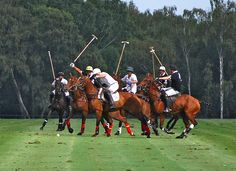 Polo at the Guards Club Windsor by Brian Mickey