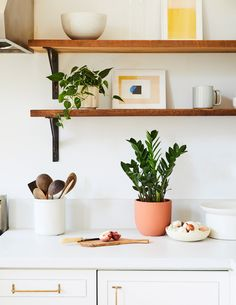 Philodendron | Tropical Trailing Plants & Houseplants for Delivery – The Sill Plante Zz, Zz Plant, Cheese Plant, Artificial Orchids, Low Light Plants, Monstera Deliciosa, Monstera Leaves, Fiddle Leaf Fig, Perfect Plants