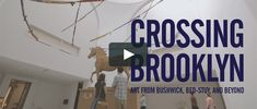 "Short promo RAVA created for the Brooklyn Museum, promoting the exhibition currently on view titled ""Crossing Brooklyn."" Drawing on the links between…"