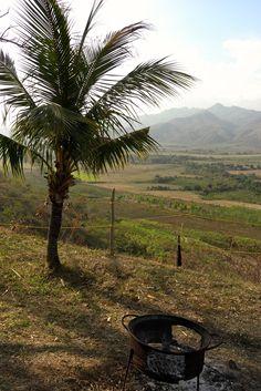 Cuba Cuba, Vineyard, Mountains, Nature, Plants, Travel, Outdoor, Outdoors, Naturaleza