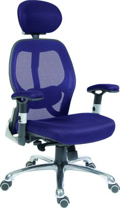 best office chair after spinal fusion seat covers bed bath and beyond 13 ergonomic chairs images teknik cobham luxury mesh back executive with lumbar support blue