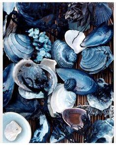 bleu ~nature