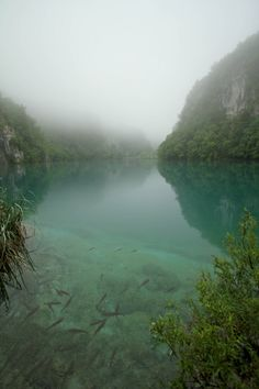 I want to swim here...