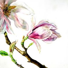 https://www.jonathancooper.co.uk/artists/42-rosie-sanders/works/484/