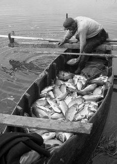 Ψαριά στην Λίμνη Κάρλα 1953 φωτ.Τάκης Τλούπας