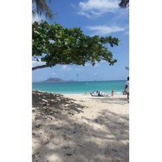 規制後のツアー - カイルア ビーチ パークのクチコミ - 旅行のクチコミサイト フォートラベル