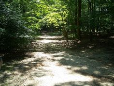 The mountain road near Chancellorsville, where Stonewall Jackson received the wound that would lead to his death.