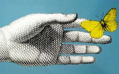 #mycoolness #illustration #fornasetti collection