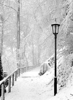 Beautiful Winter, Zollernalbkreis, Germany  Or Narnia?