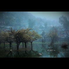 My Lebanon. Live Love, Beirut, Lebanon, Mists, Landscape Photography, Scotland, Landscapes, Instagram Posts, Painting