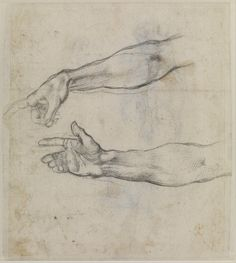 'Studies of an outstretched arm' by Michelangelo Buonarroti — Studies for the fresco The Drunkenness of Noah in the Sistine Chapel.