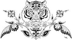 Tribal Tiger Tattoo Designs   ... the popularity of tiger tattoo designs available on the scene today