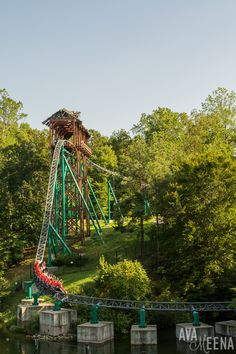 Verbolten roller coaster. | Busch Gardens Williamsburg: Ride Reviews and Tips for Visiting.