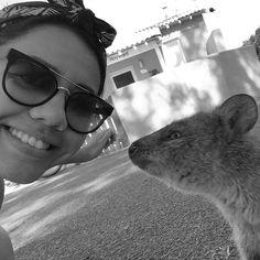 Got a valentine kiss from a quokka!   #rottnestisland #nubeperthtrip #westernaustralia #instatravel #selfie by nurul_putri http://ift.tt/1L5GqLp