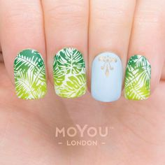 """1,617 Likes, 8 Comments - MoYou-London Official (@moyou_london) on Instagram: """"Get your summer vibes on ⠀ ⠀ Products included: ⠀⠀⠀ Plates - Tropical 14/15 // Typography 08⠀…"""""""