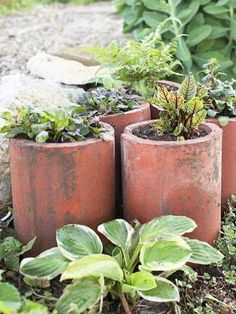 Inexpensive drainage tiles hold a variety of small plants. More ideas for unusual container gardens: http://www.midwestliving.com/garden/container/creative-containers/