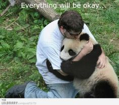 I want to hug a Panda bear. That is so adorable <3