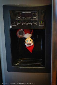 Surprise! Elf in the water dispenser!