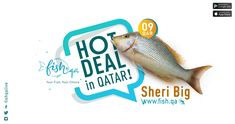 Buy Fresh Sheri Fish Online anywhere from Qatar. We deliver high quality Sheri Fish daily. Free Delivery & Cash On Delivery Available all Over Qatar! Business Card Template Photoshop, Delivery, Fish, Templates, Detail, Stencils, Pisces, Vorlage, Models