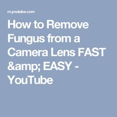 How to Remove Fungus from a Camera Lens FAST & EASY - YouTube