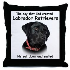 I love this! Btw I have 2 black labs