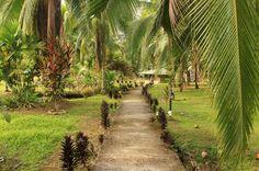 pizote lodge path   - Costa Rica