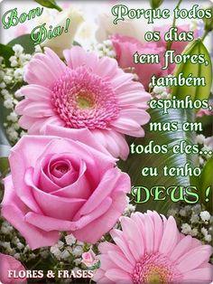 Flores e frases: BOM DIA...