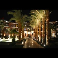 Aswan - Sofitel - ( Old Cataract )  Night view Garden Entrance