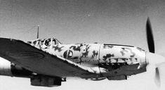 """Macchi MC.202 """"Folgore"""" of the Regia Aeronautica's 153rd Gruppo in flight over the Sicily, Summer 1942."""