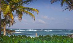 Beautiful, virgin beaches around Tulum are waiting for investors www.rivieramayapropertyconsultants.com