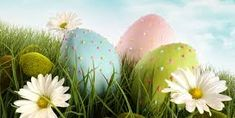Find Three Decorated Easter Eggs Grass Daisies stock images in HD and millions of other royalty-free stock photos, illustrations and vectors in the Shutterstock collection. Thousands of new, high-quality pictures added every day. Duncan Hines, Art Competitions, Coloring Easter Eggs, Spring Home, Royalty Free Photos, Happy Easter, Grass, Daisy, Stock Photos