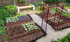 With these vegetable garden design ideas, you can get fresh harvests wherever you live.