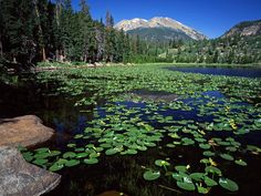 Image detail for -... Mountain, Rocky Mountain National Park, Colorado US photos, wallpapers