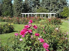Manito Park Gardens, Spokane WA