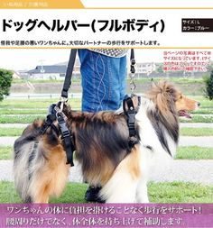 Dog Lifting Aid - Mobility Harness - Large Size Pet Supplies Near Me