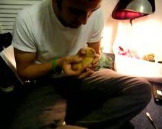 My pet duck named Mervin
