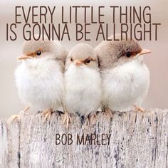 Every little thing is gonna be allright - Bob Marley